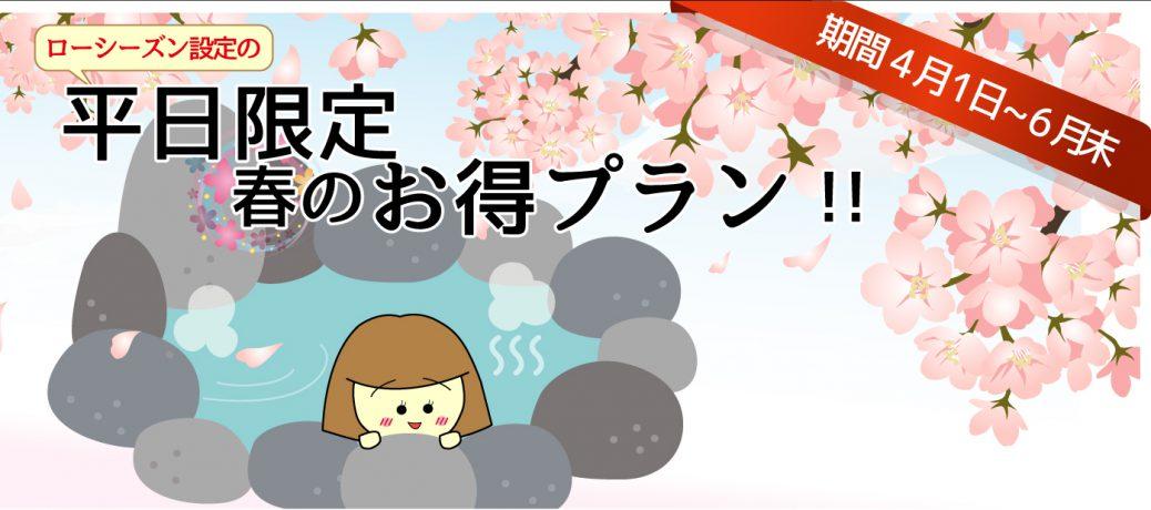 平日限定☆春のお得プラン