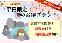 平日限定☆春のお得プラン2019!